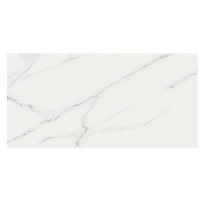 Marmi Pol 16 x 32 Porcelain Field Tile in Carrara