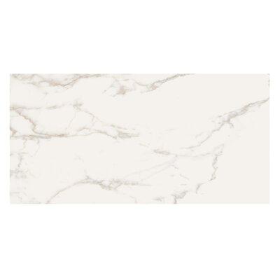 Marmi Pol 16 x 32 Porcelain Field Tile in Staturio Gold