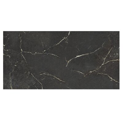 Marmi Pol 12 x 24 Porcelain Field Tile in Nero Reale Black