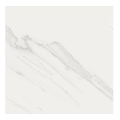 Marmi Pol 32 x 32 Porcelain Field Tile in Carrara