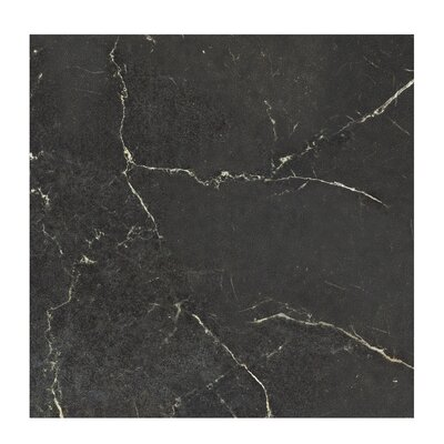 Marmi Pol 24 x 24 Porcelain Field Tile in Nero Reale Black