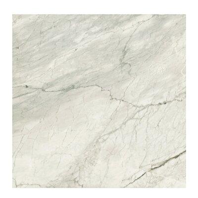 Marmi Pol 32 x 32 Porcelain Field Tile in Grigio