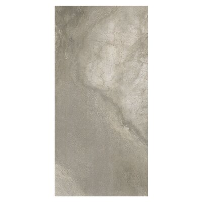 Waterfall Victoria 12 x 24 Porcelain Wood Look Tile in Light Brown