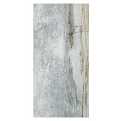 Waterfall Yosemite 12 x 24 Porcelain Wood Look Tile in Gray