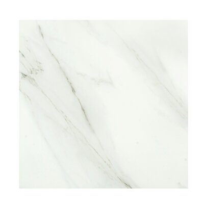 Calacata Classico 24 x 24 Porcelain Field Tile in Bone White