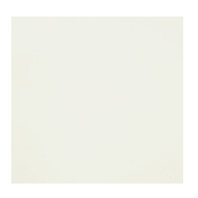 Bianco 24 x 24 Porcelain Field Tile in Bone White