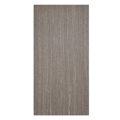 Volcano 12 x 24 Porcelain Field Tile in Marrone