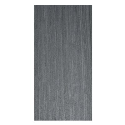 Volcano 12 x 24 Porcelain Field Tile in Nero