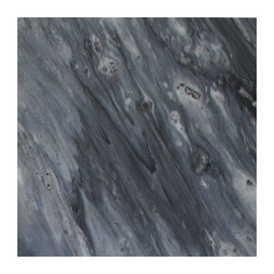 Bardiglio 12 x 24 Marble Field Tile in Dark Gray