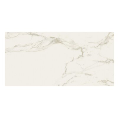 Marmi Pol 12 x 24 Porcelain Field Tile in Staturio Gold
