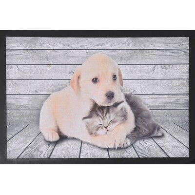 Indoor Printed Dog Cat PVC Polyester Doormat