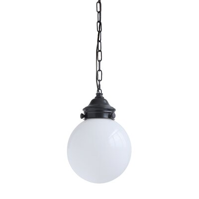 Crumrine Metal and Glass 1-Light Globe Pendant