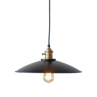 Crew Park Metal and Brass 1-Light Inverted Pendant