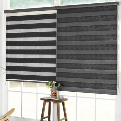 Pesce Day and Night Room Darkening Ivory Roller Shade Blind Size: 27W x 84L, Color: Black