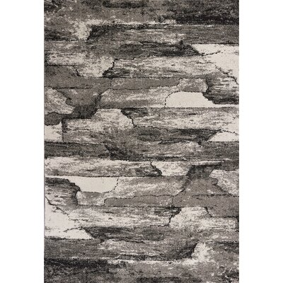 Criswell Gray Area Rug Rug Size: Rectangle 53 x 77