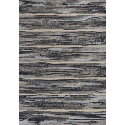 Korth Gray Area Rug Rug Size: Rectangle 710 x 1010