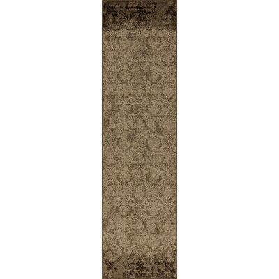 Binette Olive Area Rug Rug Size: Runner 22 x 711