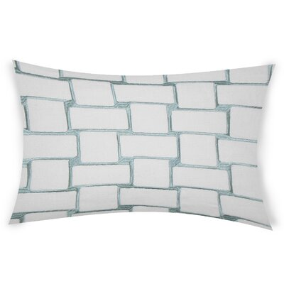 Colophon Lumbar Pillow Color: Turquoise