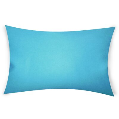 Odonoghue Cotton Lumbar Pillow Color: Light Blue