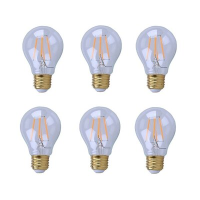 5W E26/Medium LED Vintage Filament Light Bulb