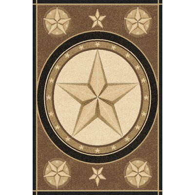 Philpott Wool Brown Area Rug Rug Size: Rectangle 53 x 72