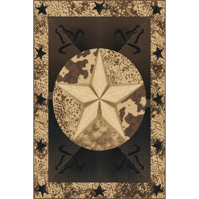 Piccirillo Wool Brown Area Rug Rug Size: Rectangle 5'3