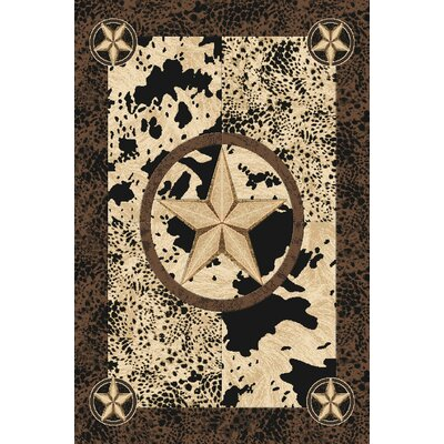 Pickerel Wool Black Area Rug Rug Size: Rectangle 5'3