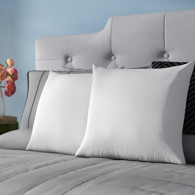 Indoor Cotton Pillow Insert Size: 18 x 18