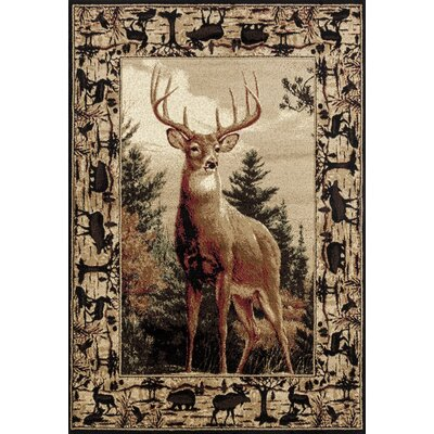 Pippen Regal Pride Brown/Beige/Green Area Rug Rug Size: Rectangle 53 x 72