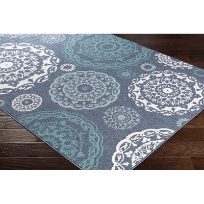 Dutcher Medallion Charcoal/Aqua Indoor/Outdoor Area Rug Rug Size: Rectangle 76 x 109