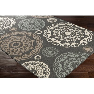 Dutcher Medallion Black/Sea Foam Indoor/Outdoor Area Rug Rug Size: Rectangle 53 x 76