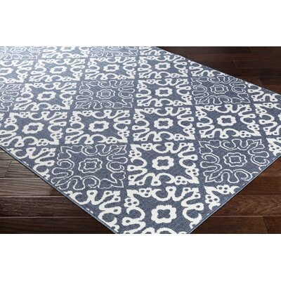 Charcoal/White Indoor/Outdoor Area Rug Rug Size: Rectangle 53 x 76