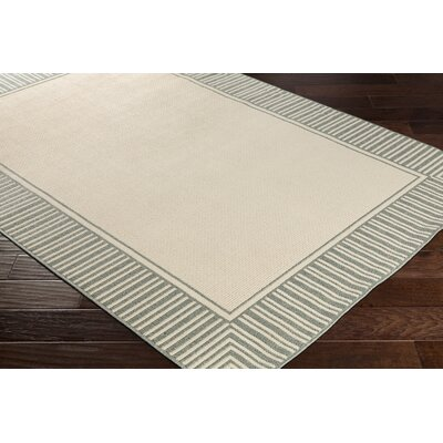 Oliver Sea Foam Indoor/Outdoor Area Rug Rug Size: Rectangle 36 x 56