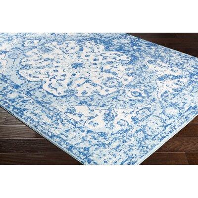 Almonte Aqua/White Area Rug Rug Size: Rectangle 710 x 103