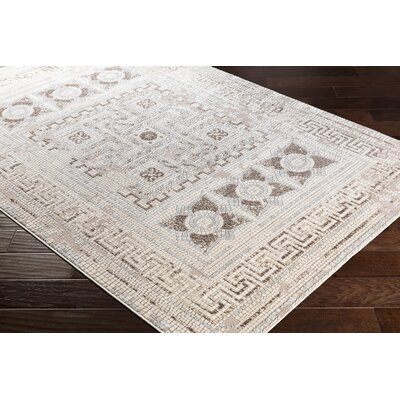 Nakasi Distressed Aqua/Beige Area Rug Rug Size: Rectangle 53 x 73