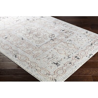 Nakasi Distressed Camel/Gray Area Rug Rug Size: Rectangle 53 x 73