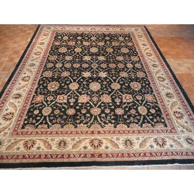 One-of-a-Kind Josephson Hand-Knotted Wool Black Area Rug