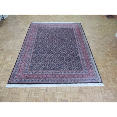 One-of-a-Kind Pellegrino Bijar Hand-Knotted Navy Blue Area Rug
