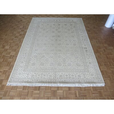 One-of-a-Kind Paden Hand-Knotted Wool Ivory Area Rug