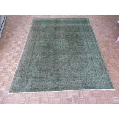 One-of-a-Kind Padro Worn Hand-Knotted Wool Light Green Area Rug