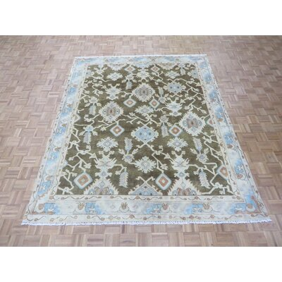 One-of-a-Kind Josephson Turkish Oushak Hand-Knotted Wool Brown Area Rug Rug Size: Rectangle 12 x 18
