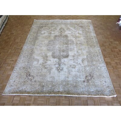 One-of-a-Kind Padro Hand-Knotted Beige Area Rug