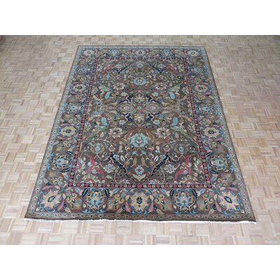 One-of-a-Kind Emerystone Hand-Knotted Cotton Brown Area Rug