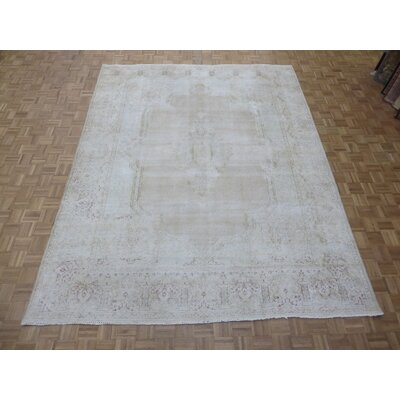 One-of-a-Kind Padro Kerman Hand-Knotted Beige Area Rug
