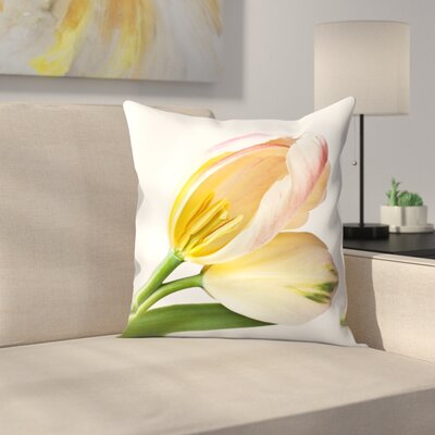 Maja Hrnjak Tulips3 Throw Pillow Size: 16 x 16