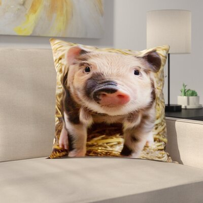 Pig Piglet Farm Throw Pillow Size: 14 H x 14 W x 2 D, Color: Natural