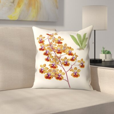Fitch Orchid Oncidium Haematochilum Throw Pillow Size: 16 x 16