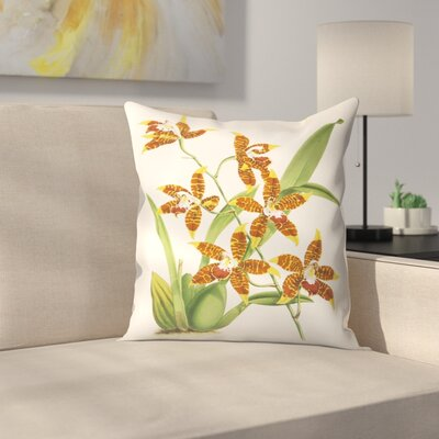 Fitch Orchid Odontoglossum Triumphans Throw Pillow Size: 18 x 18