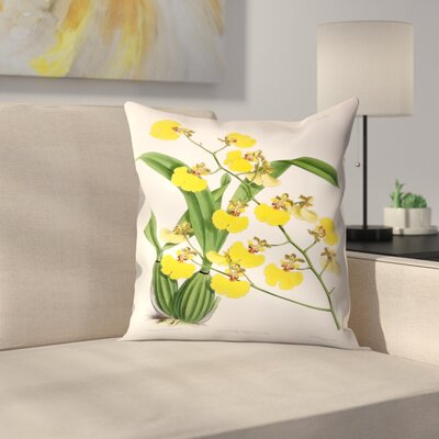 Fitch Orchid Oncidium Varicosum Throw Pillow Size: 20 x 20