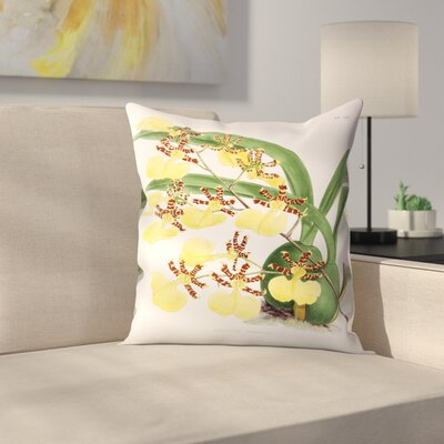 Fitch Orchid Oncidium Tigrinum Throw Pillow Size: 18 x 18
